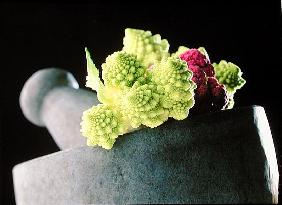 Romanescu in granite pestle & mortar, 2001 (colour photo)