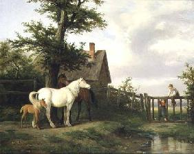 Children and Horses by a Stream