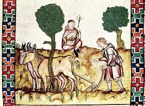 Fol.237r A farmer teaching his son to plough a field