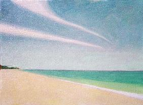 Indian Ocean, 1996 (oil on canvas)