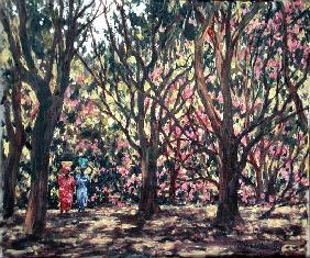 The Cashew Wood, 1998 (oil on canvas)