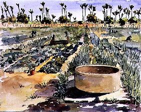 The Women''s Garden, Senegal, West Africa, 1997 (w/c on paper)