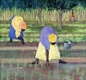Women Gardening, 2005 (oil on canvas)