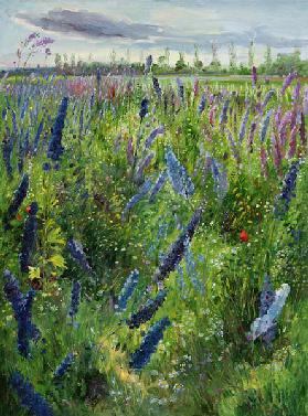 Delphiniums and Emerging Sun, 1991