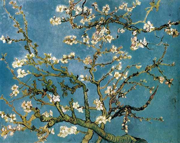 Vincent Van Gogh - Ramos de almendro en flor