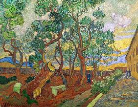 van Gogh / Garden of St.Paul Hospital