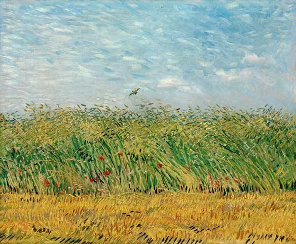 Wheat field with lark