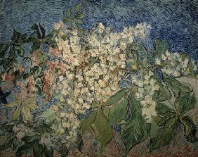 van Gogh / Blossoming Chestnut Branches