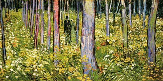 Vincent Van Gogh - Undergrowth