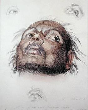 Study of an East Indian's Head