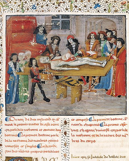 French School - Ms H 184 fol.14v Dissection lesson at the Faculty of Medicine in Montpellier, from ''La Grande Chiru
